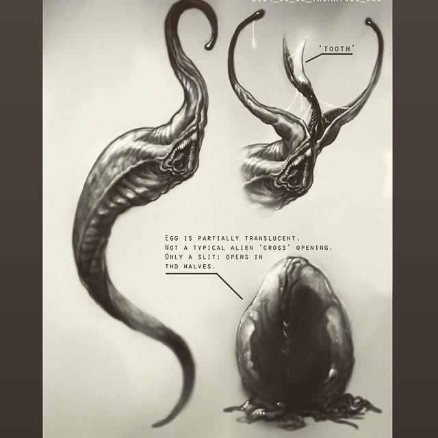 Neill Blomkamp's ALIEN Concept Art Blomalienfacehugger_large