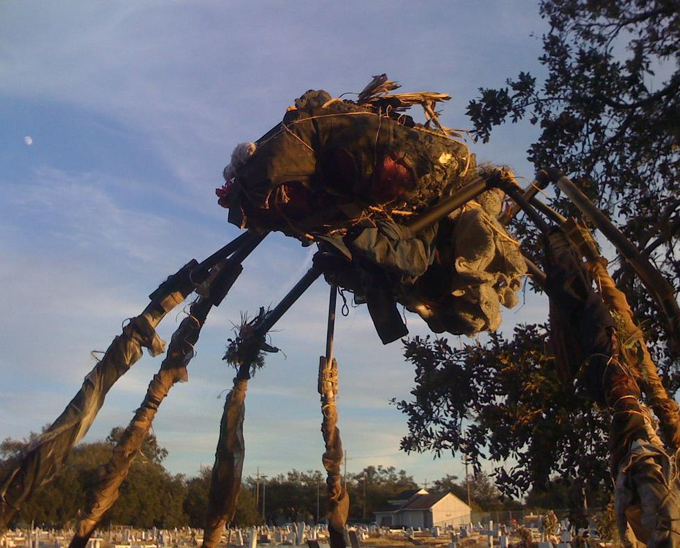 A giant spider built out of thrifted Teddy Bears for a short.