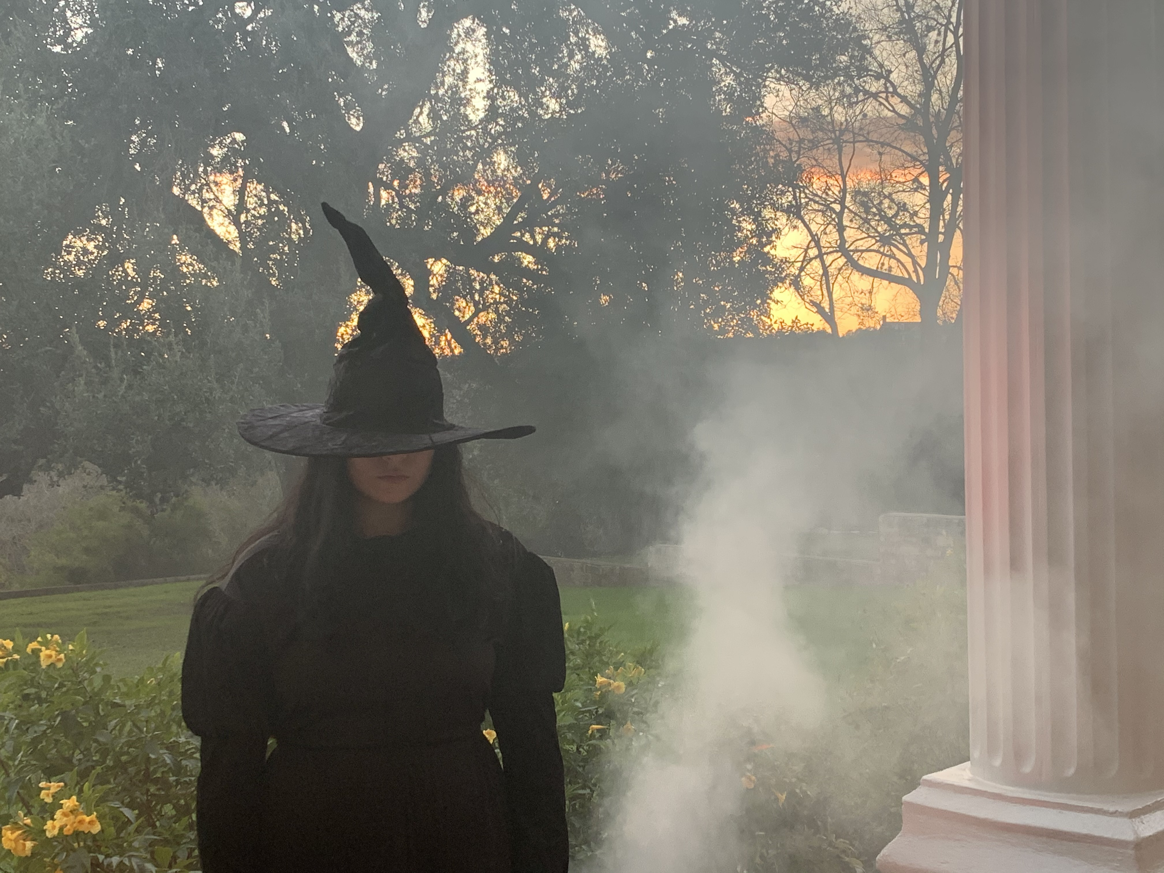 A witch awaits the GRETEL & HANSEL screening