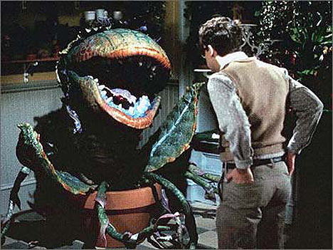 seymour and audrey II